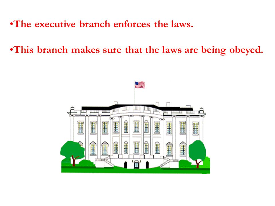The executive branch enforces the laws.