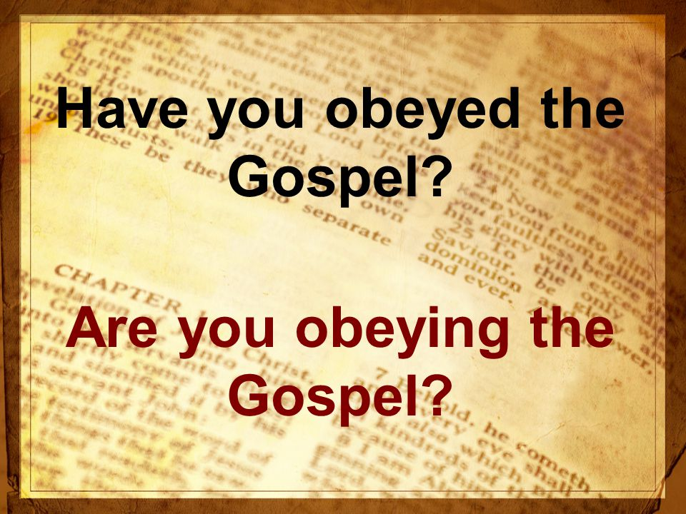 Have you obeyed the Gospel Are you obeying the Gospel
