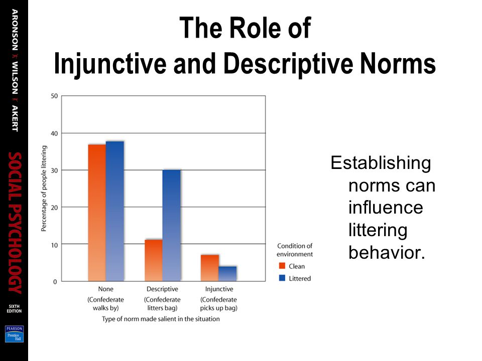The Role of Injunctive and Descriptive Norms