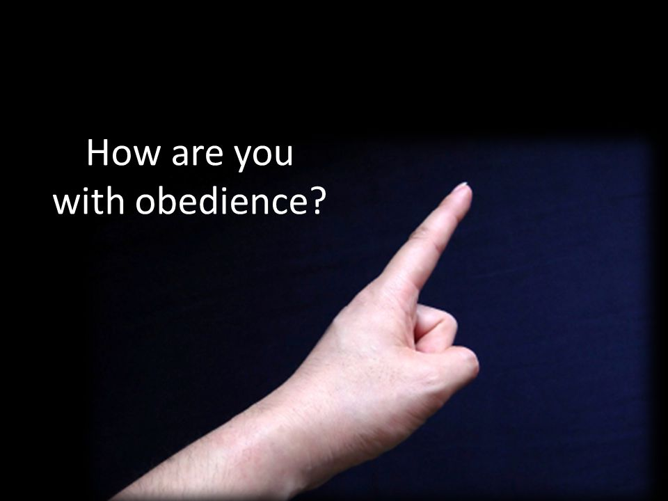 How are you with obedience