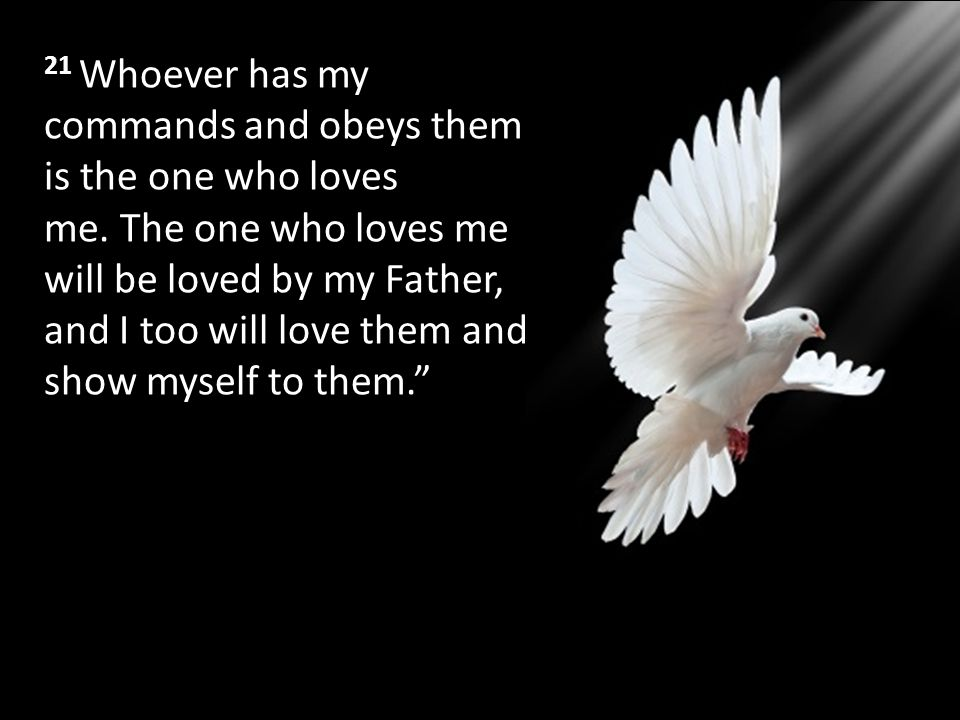 21 Whoever has my commands and obeys them is the one who loves me