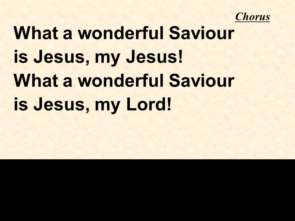 What a wonderful Saviour is Jesus, my Jesus! is Jesus, my Lord!
