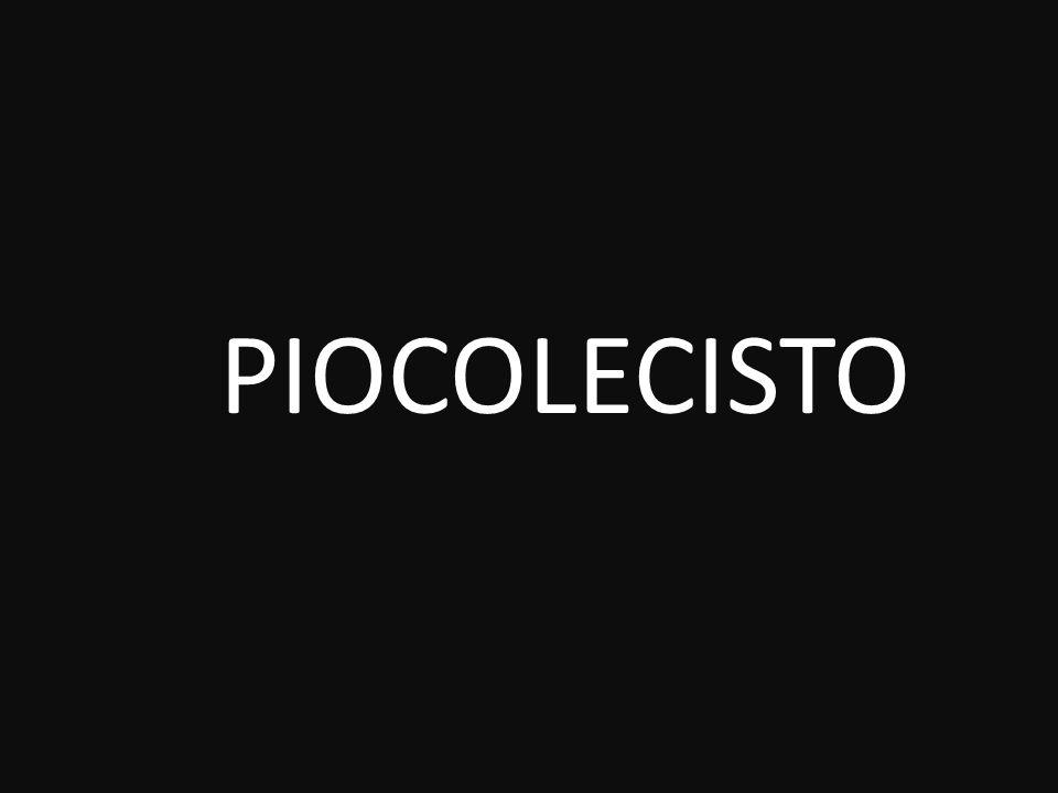 PIOCOLECISTO