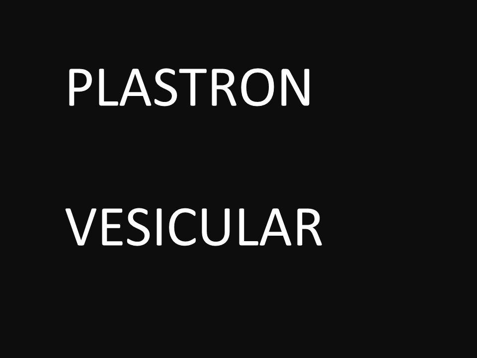 PLASTRON VESICULAR