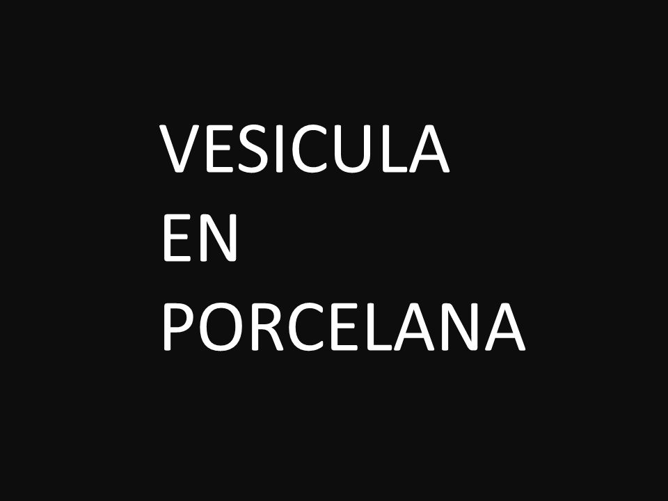 VESICULA EN PORCELANA