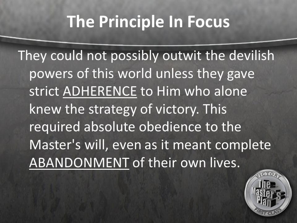 The Principle In Focus