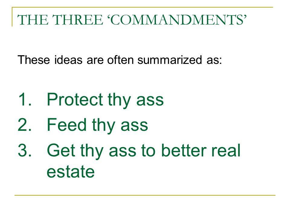 THE THREE 'COMMANDMENTS'