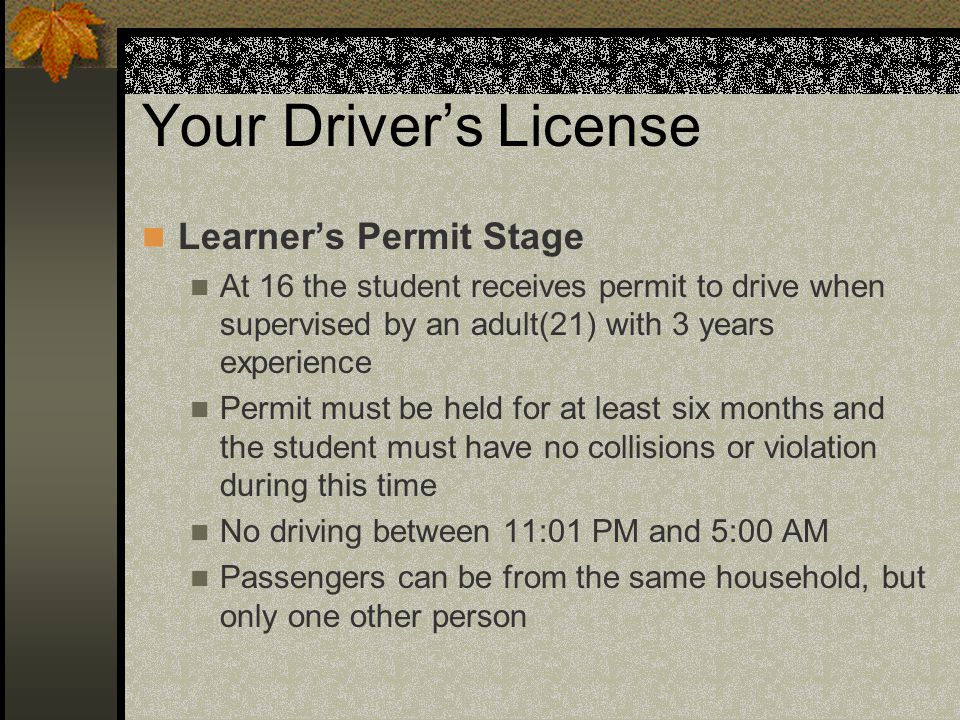 Your Driver's License Learner's Permit Stage