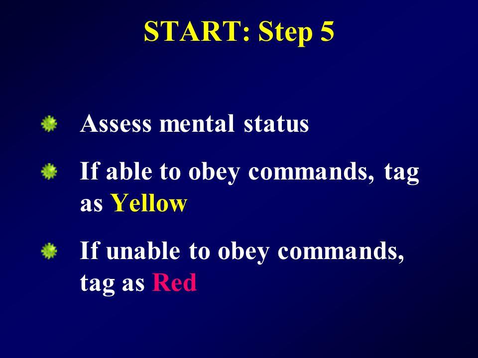 START: Step 5 Assess mental status