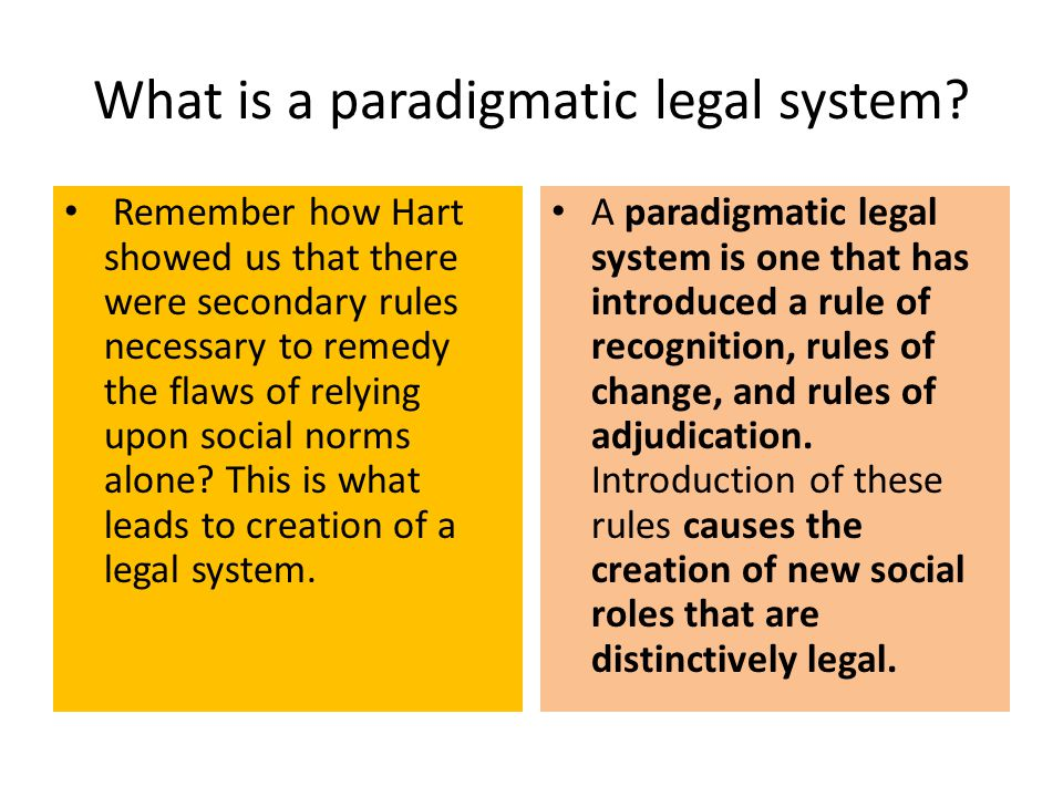 What is a paradigmatic legal system
