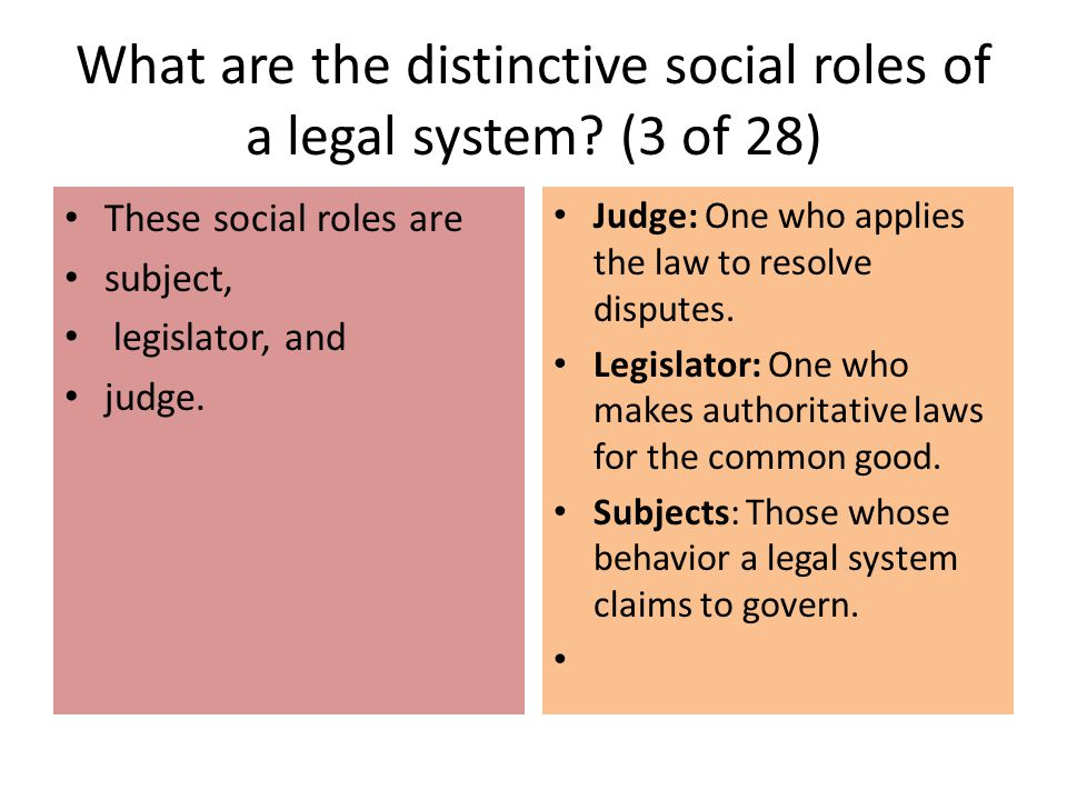 What are the distinctive social roles of a legal system (3 of 28)