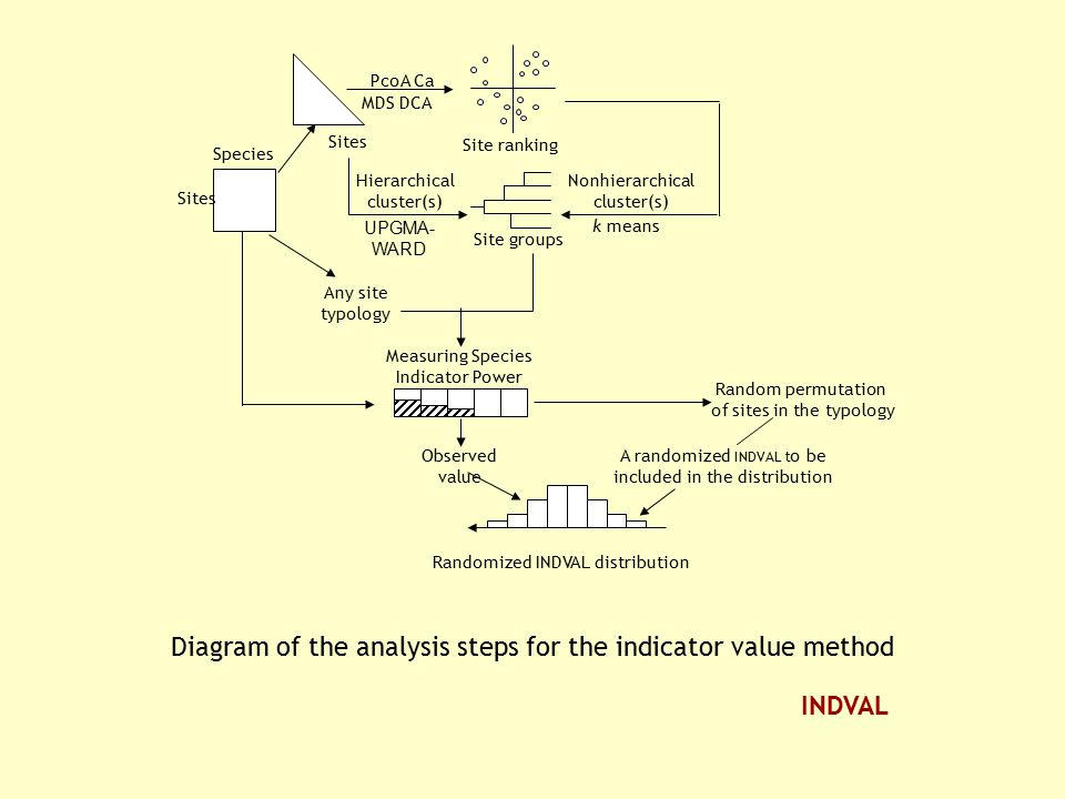 Diagram of the analysis steps for the indicator value method