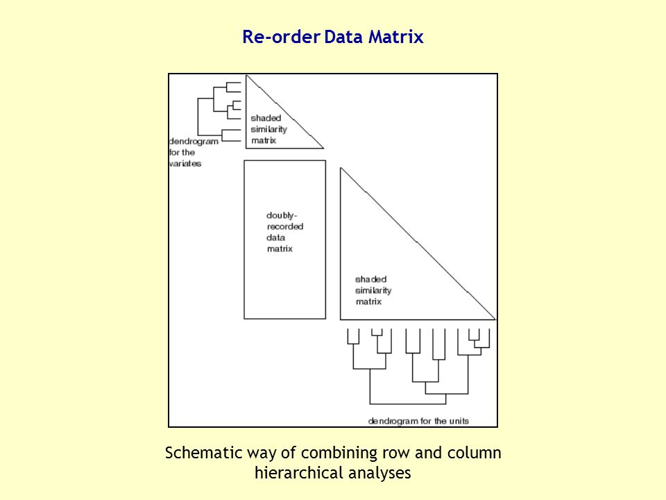 Schematic way of combining row and column hierarchical analyses