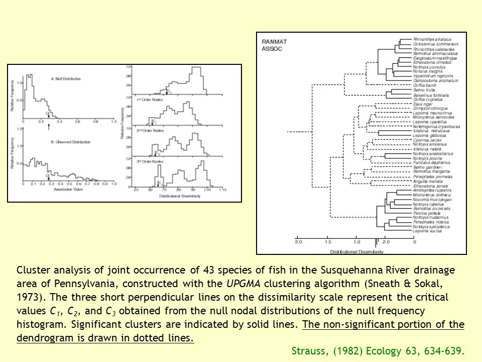 Cluster analysis of joint occurrence of 43 species of fish in the Susquehanna River drainage area of Pennsylvania, constructed with the UPGMA clustering algorithm (Sneath & Sokal, 1973). The three short perpendicular lines on the dissimilarity scale represent the critical values C1, C2, and C3 obtained from the null nodal distributions of the null frequency histogram. Significant clusters are indicated by solid lines. The non-significant portion of the dendrogram is drawn in dotted lines.