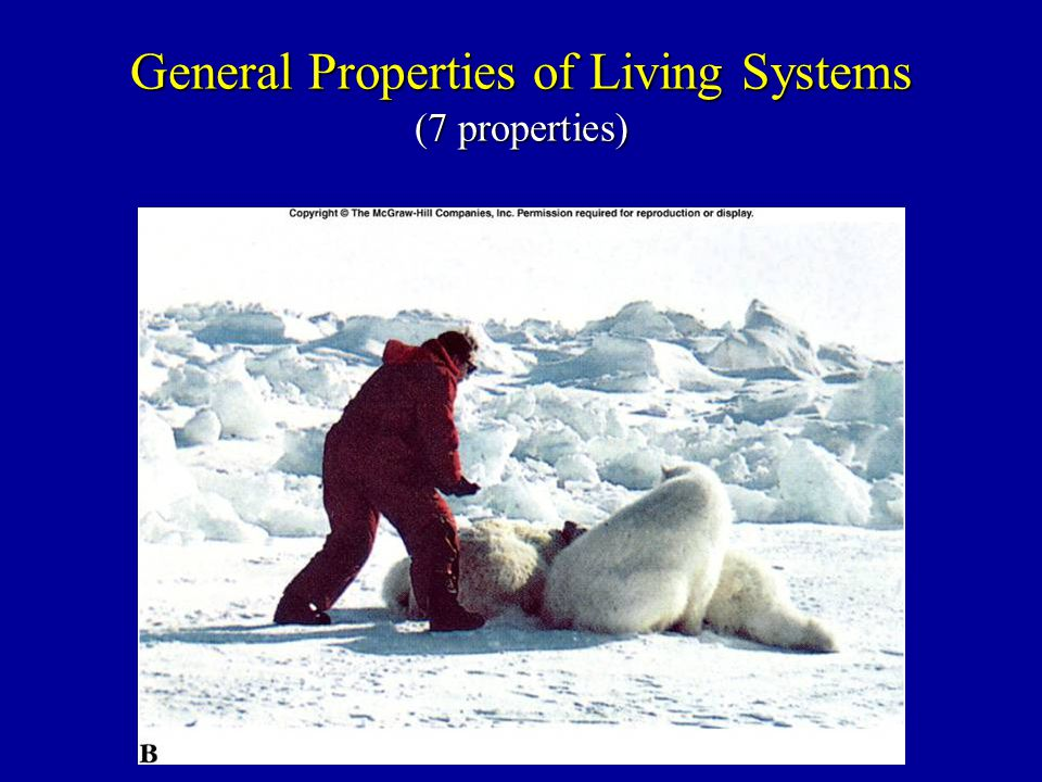General Properties of Living Systems (7 properties)