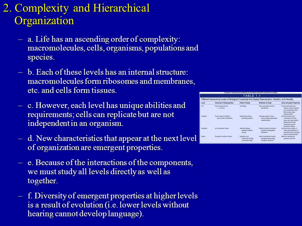 2. Complexity and Hierarchical Organization