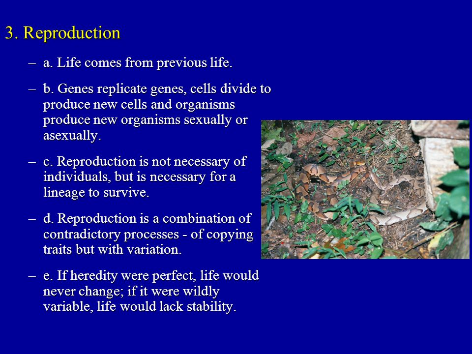 3. Reproduction a. Life comes from previous life.
