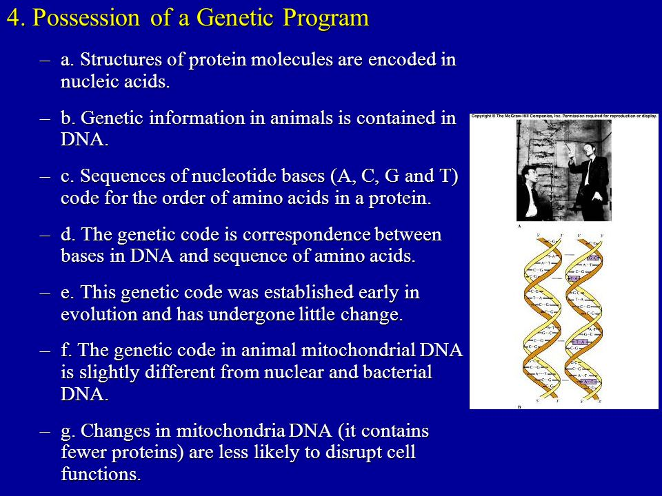 4. Possession of a Genetic Program