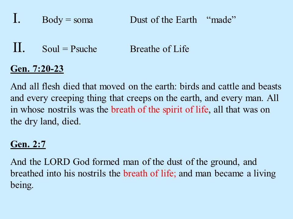 I. Body = soma Dust of the Earth made