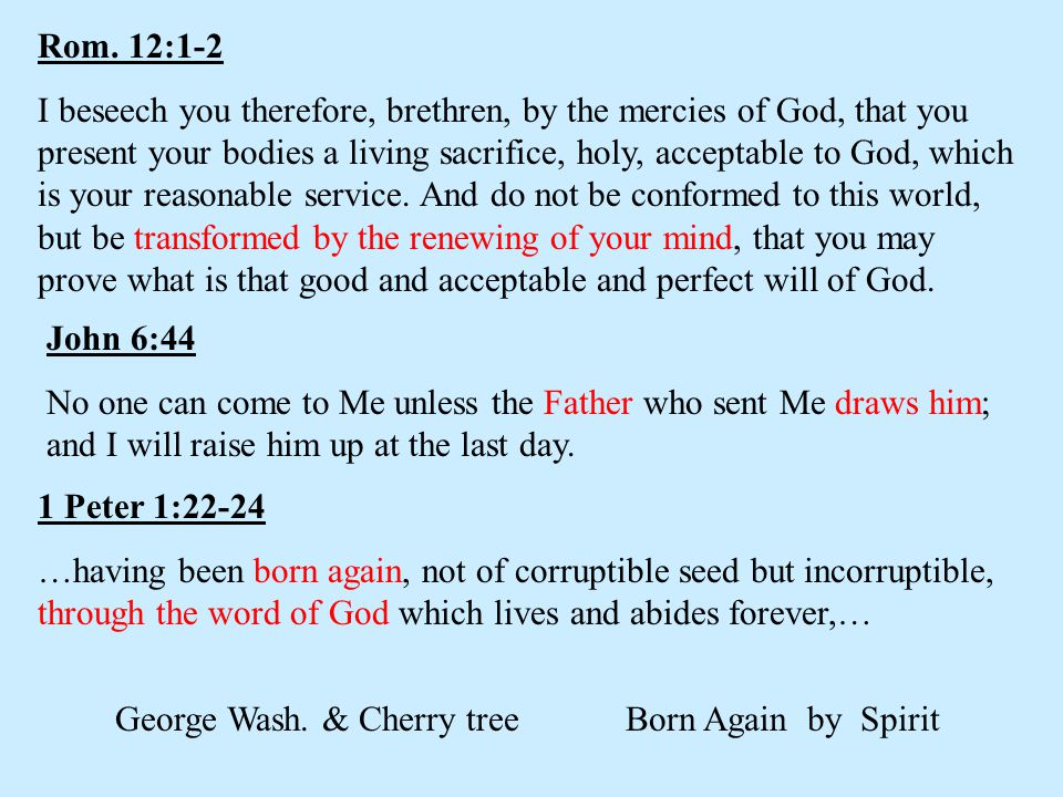 George Wash. & Cherry tree Born Again by Spirit