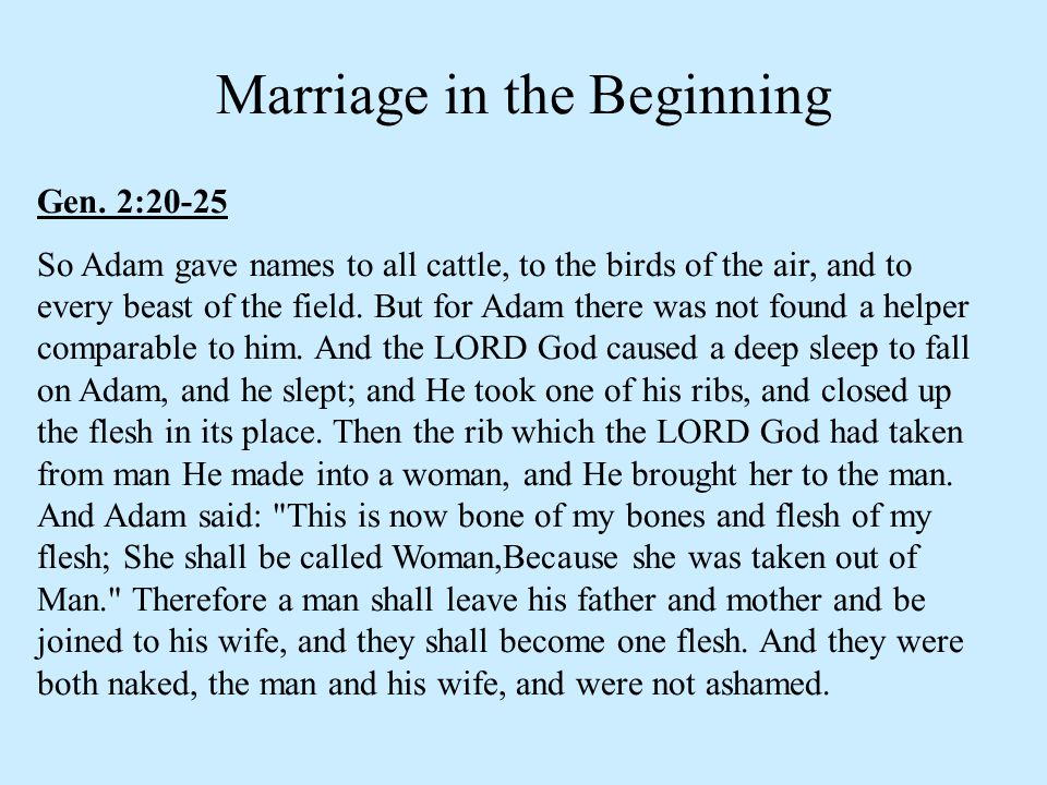 Marriage in the Beginning