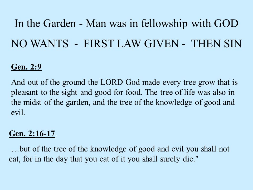In the Garden - Man was in fellowship with GOD