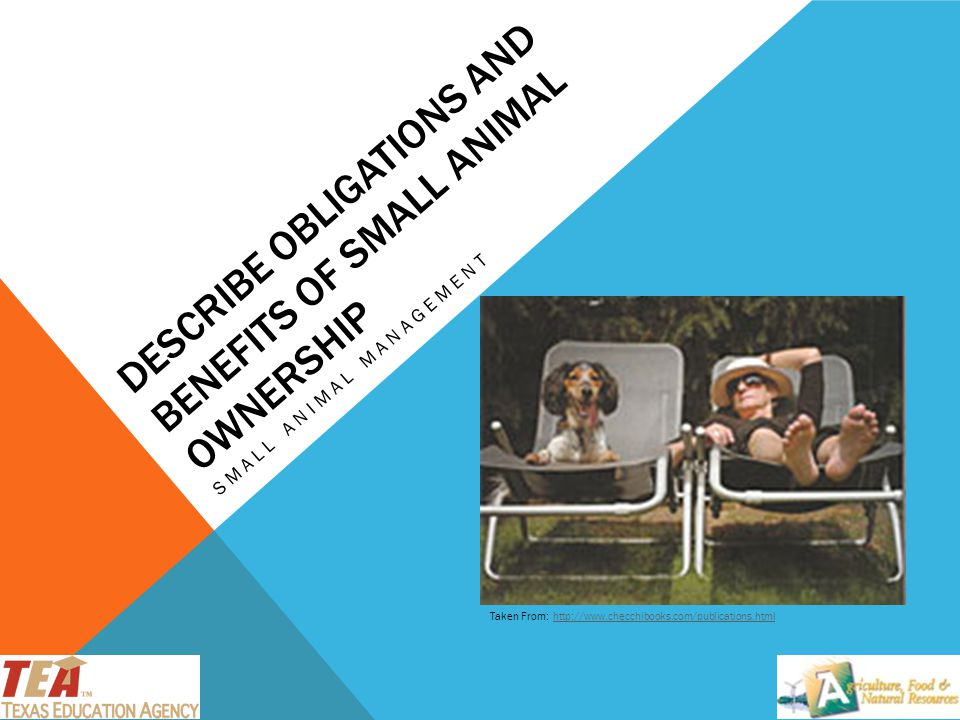 Describe Obligations and Benefits of Small Animal Ownership
