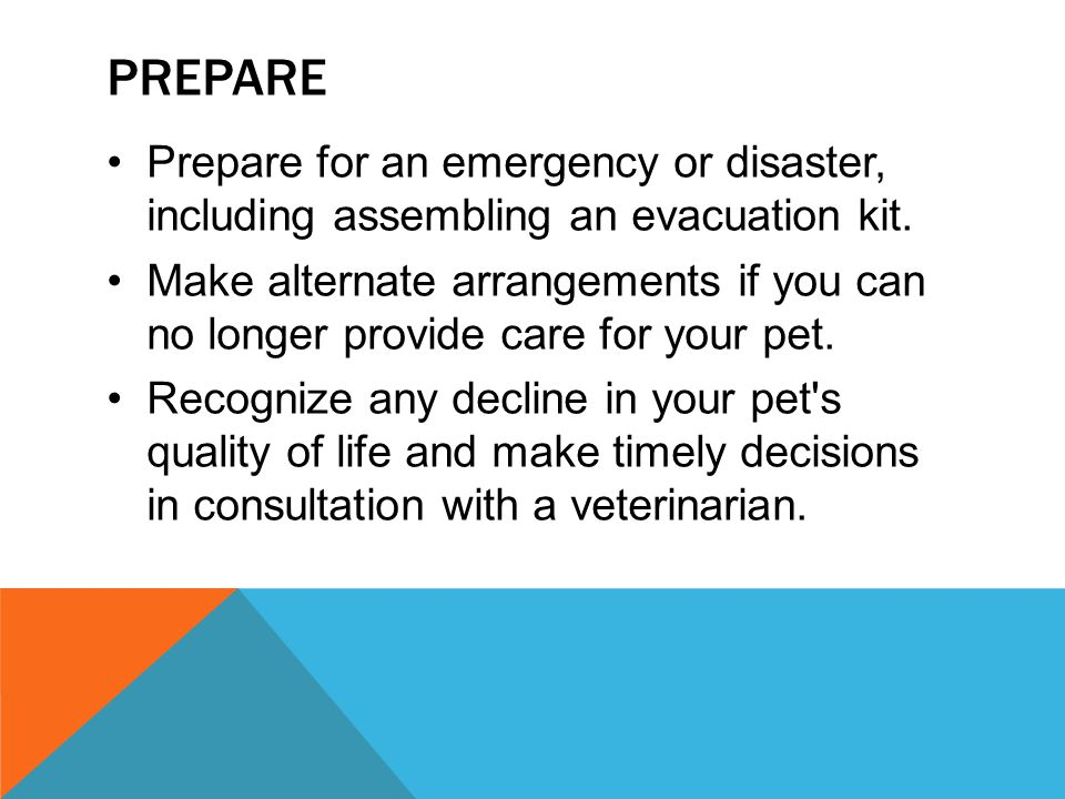 Prepare Prepare for an emergency or disaster, including assembling an evacuation kit.