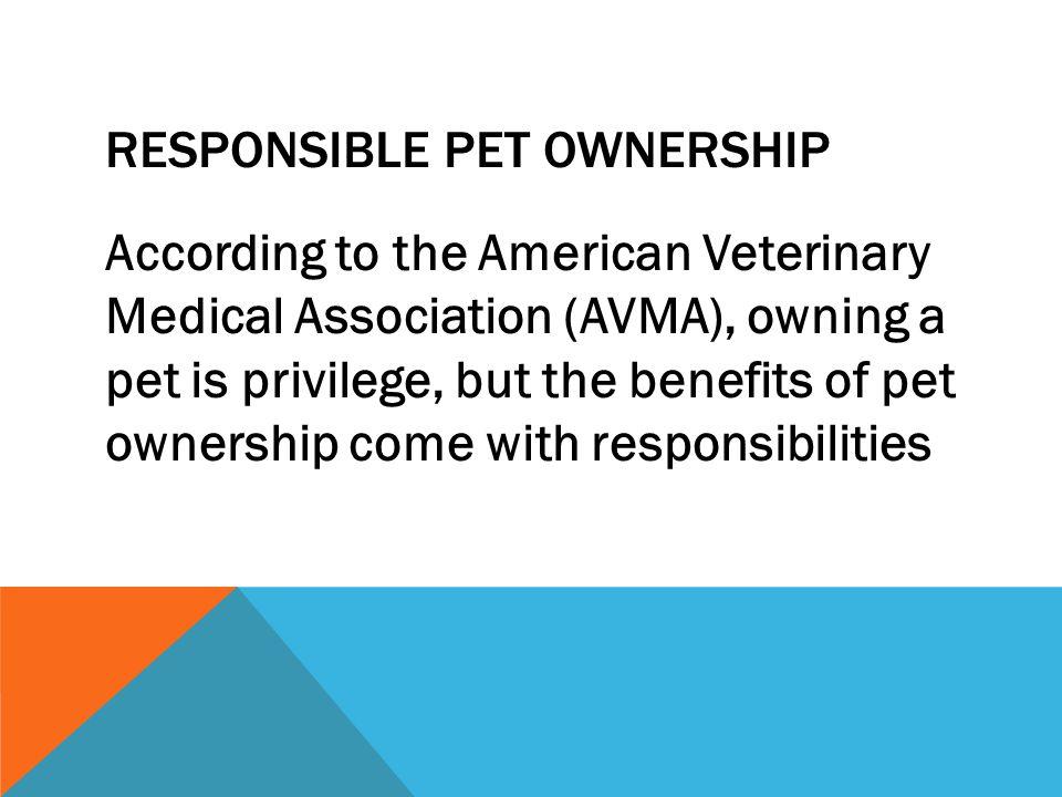 Responsible Pet Ownership