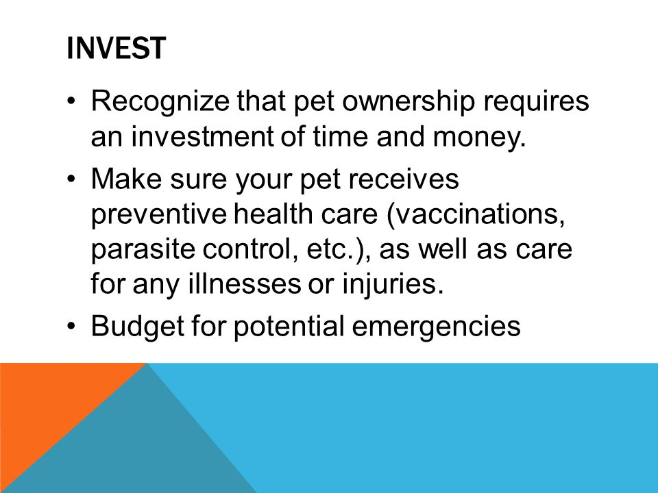 Invest Recognize that pet ownership requires an investment of time and money.