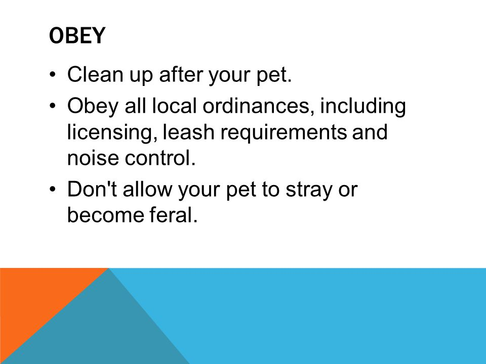 Obey Clean up after your pet.
