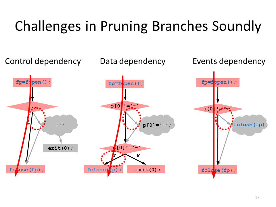 Challenges in Pruning Branches Soundly