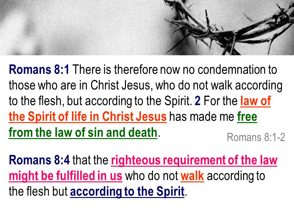 from the law of sin and death.