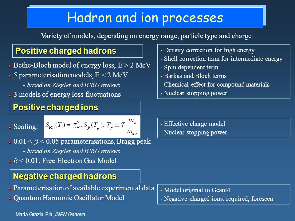 Hadron and ion processes