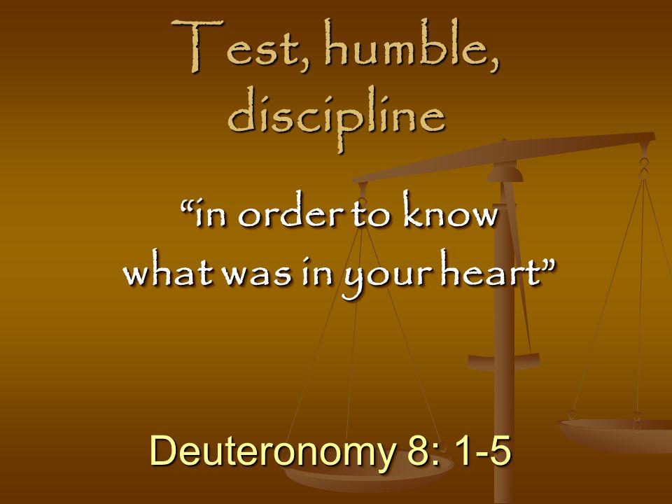 Test, humble, discipline