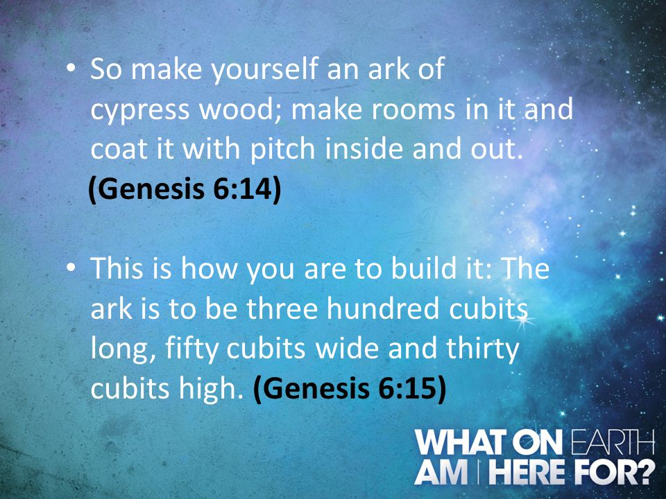 So make yourself an ark of cypress wood; make rooms in it and coat it with pitch inside and out.
