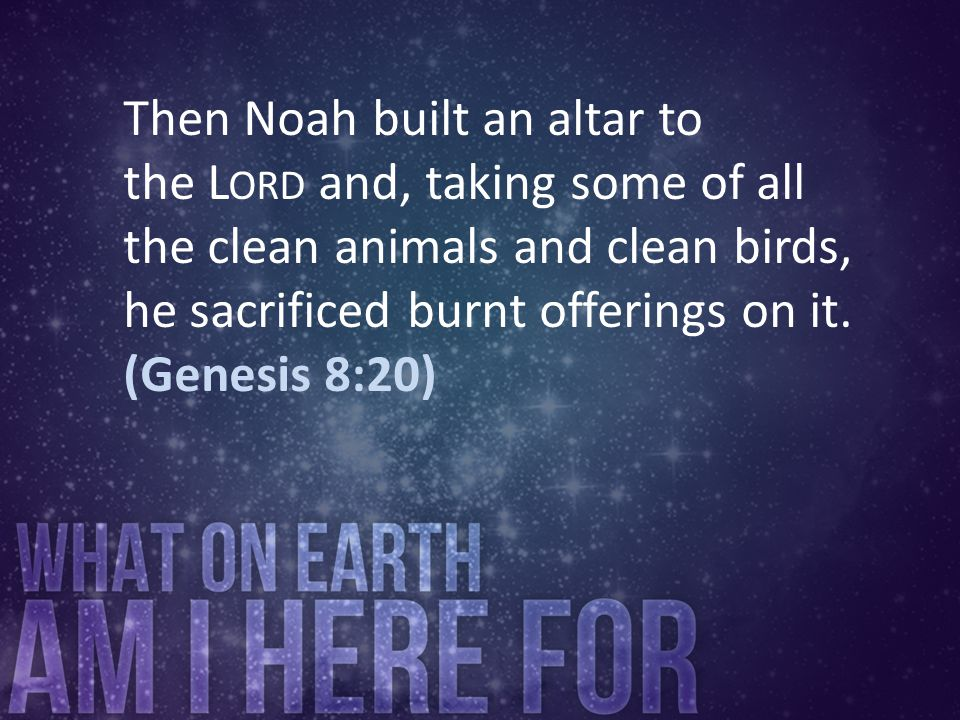 Then Noah built an altar to the Lord and, taking some of all the clean animals and clean birds, he sacrificed burnt offerings on it.