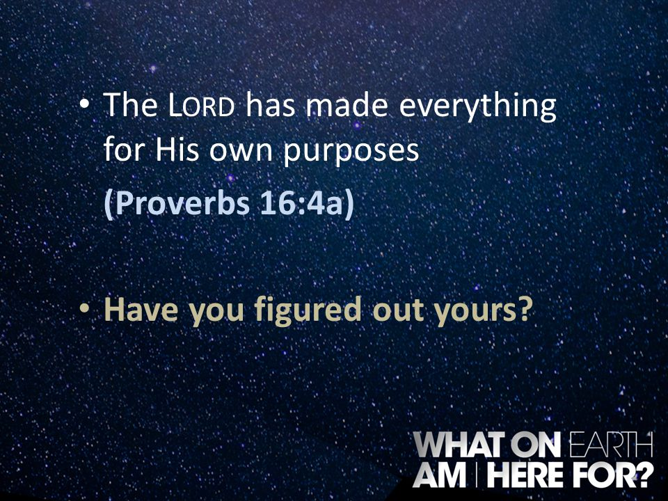 The Lord has made everything for His own purposes