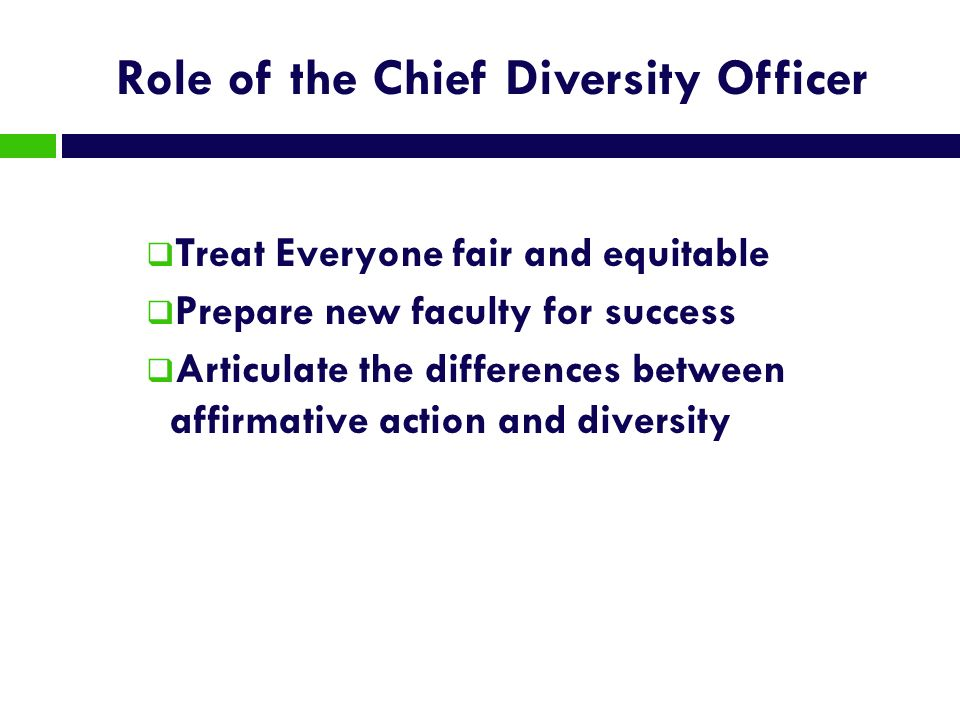 Role of the Chief Diversity Officer