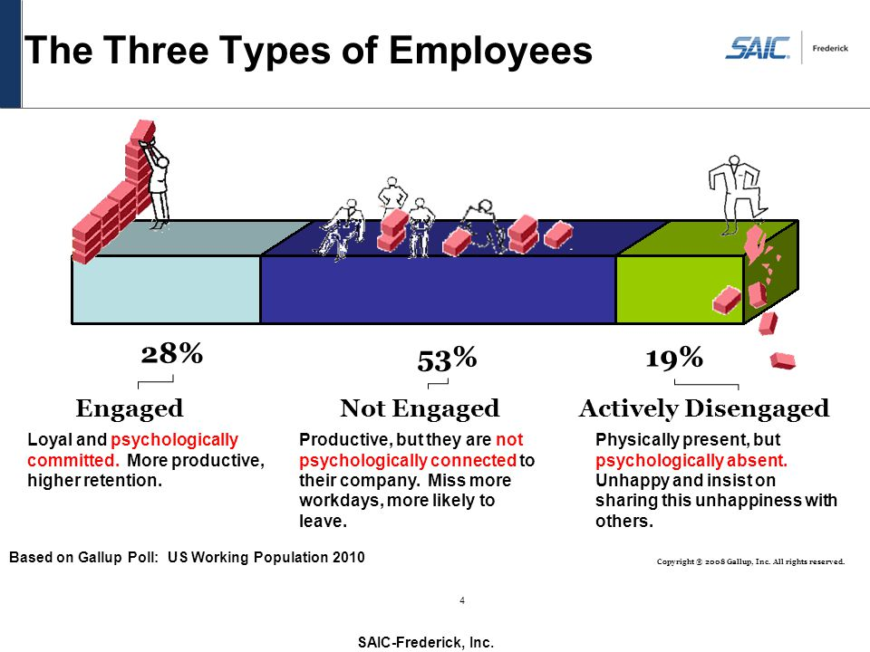 The Three Types of Employees
