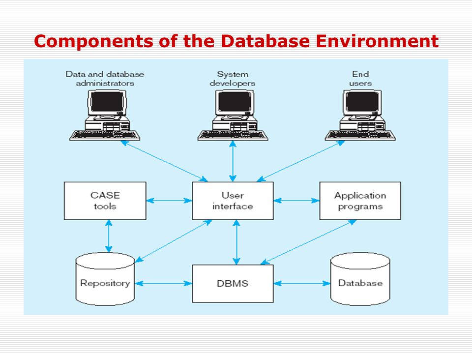 Components of the Database Environment