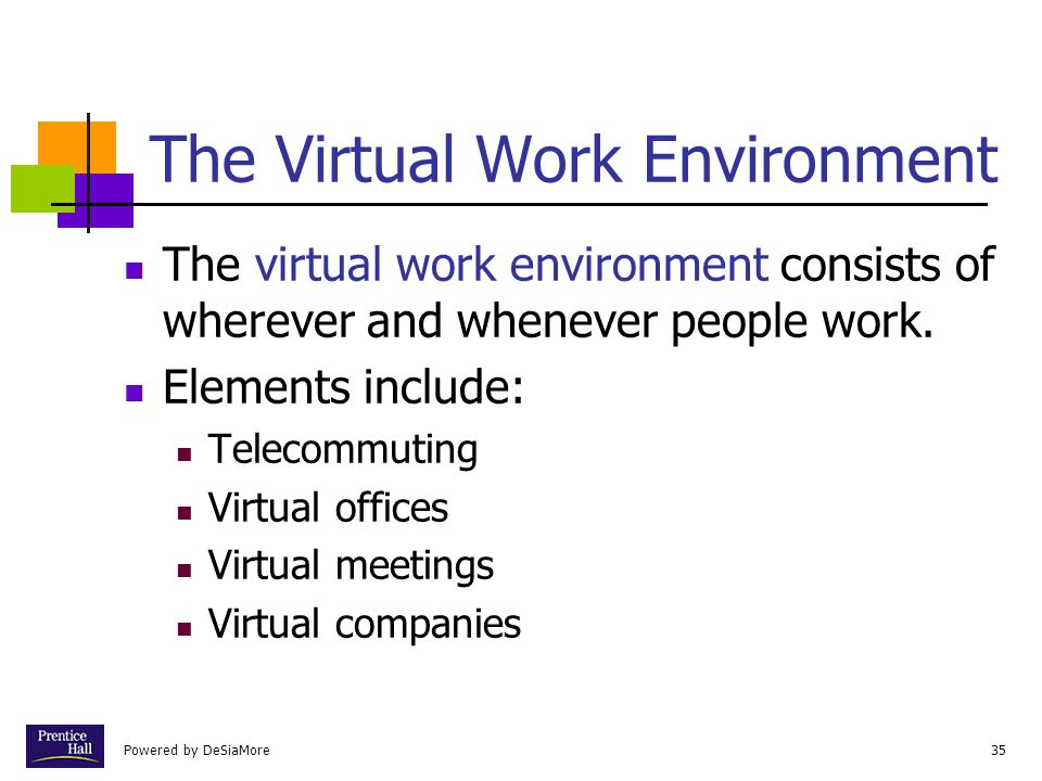 The Virtual Work Environment