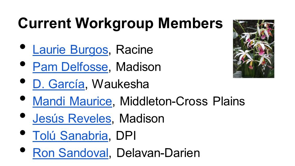 Current Workgroup Members