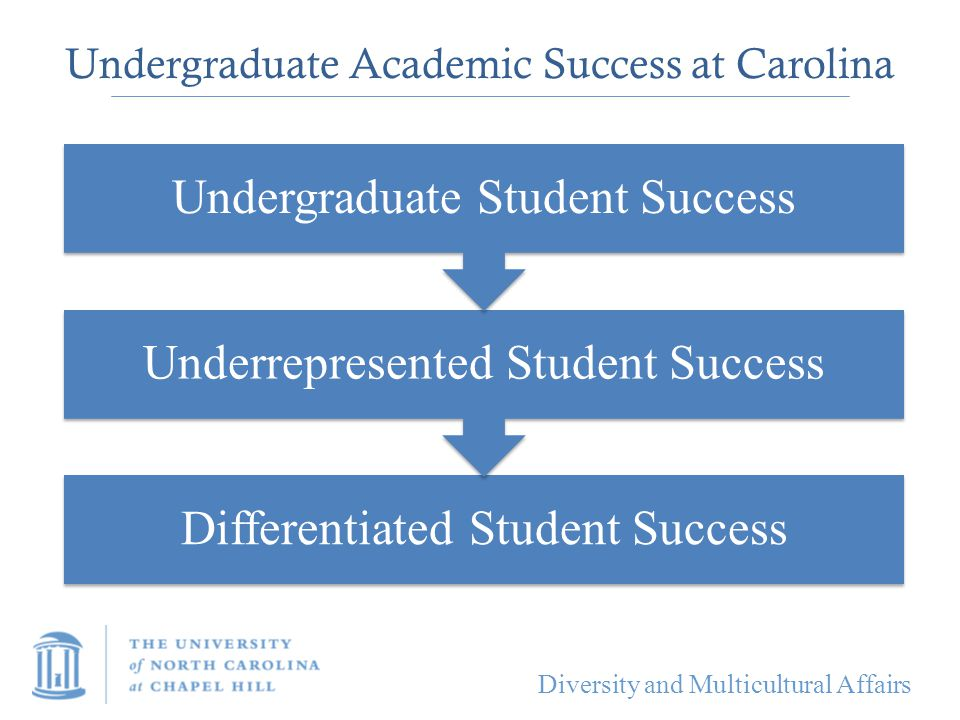 Undergraduate Academic Success at Carolina