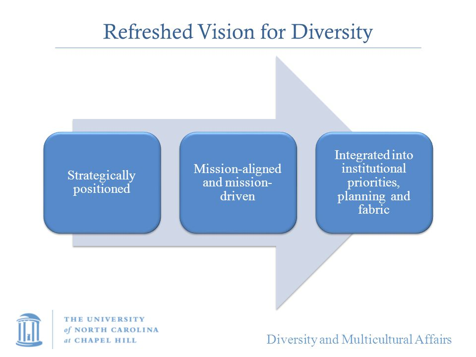Refreshed Vision for Diversity