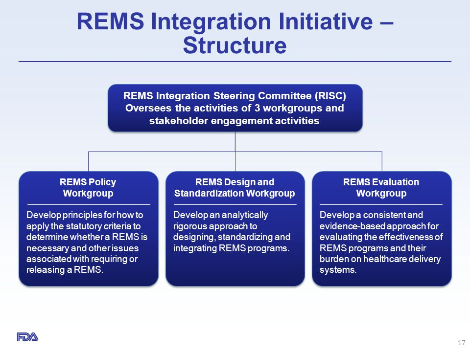 REMS Integration Initiative – Structure