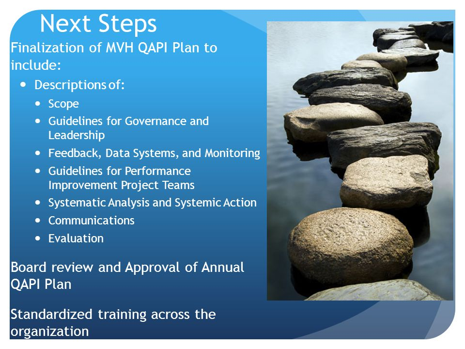 Next Steps Finalization of MVH QAPI Plan to include: