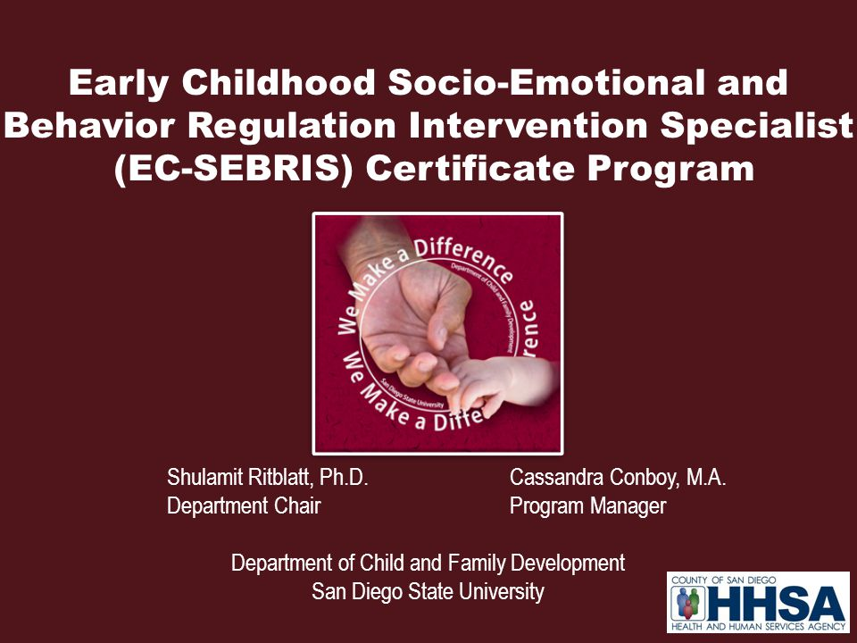 Early Childhood Socio-Emotional and