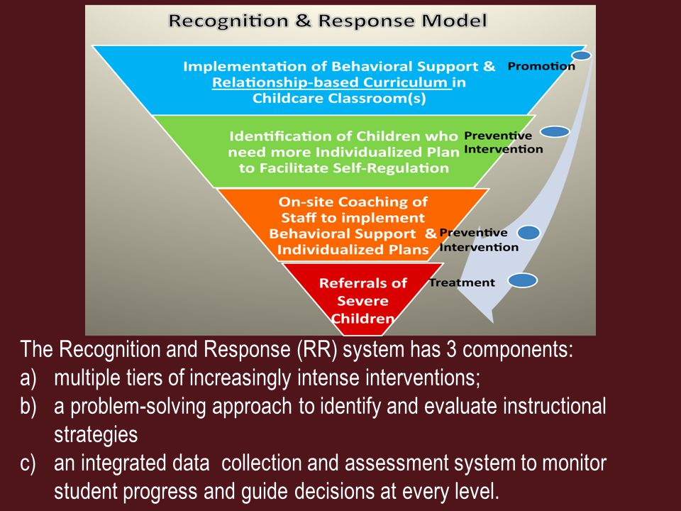 The Recognition and Response (RR) system has 3 components: