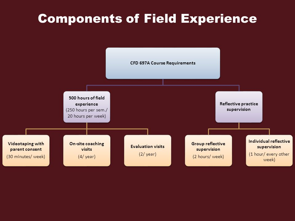 Components of Field Experience